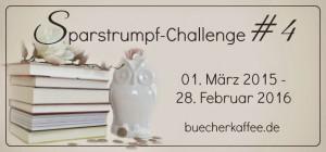 Sparstrumpfchallenge2015 (1)